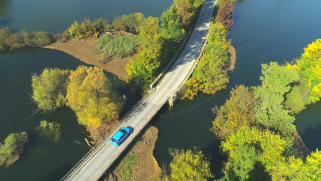 AERIAL: Flying above blue car driving trough flooded countriside fields in fall video