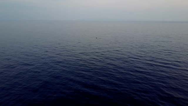 vídeos de stock e filmes b-roll de flying above calm sea before storm off maui coast - oceano pacífico