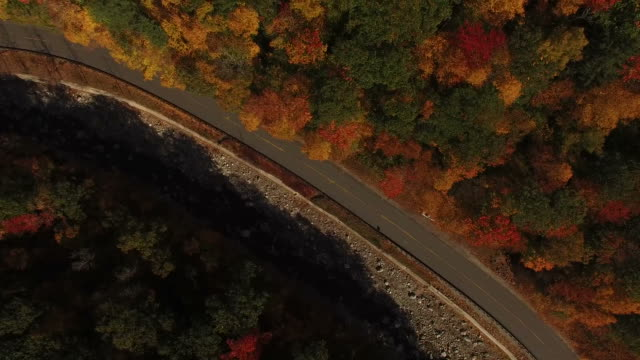 Flying Above Deep Fall Colors video