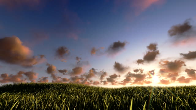 Flying above grass sunrise timelapse, night to day video