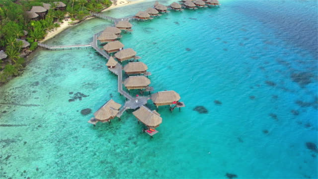 AERIAL: Flying above luxury overwater villas in deluxe hotel resort on tropical island with exotic white sandy beaches and beautiful lush palm trees swaying in the wind video