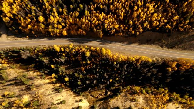 vídeos de stock, filmes e b-roll de vôo acima da estrada remota na região selvagem de colorado - condado de pitkin