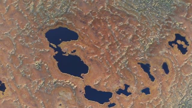 日没垂直ドローンショットでシベリアの沼の上を飛ぶ - シベリア点の映像素材/bロール