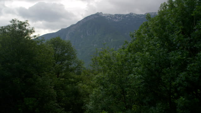 AERIAL: Flying above the lush forest in big mountain valley video