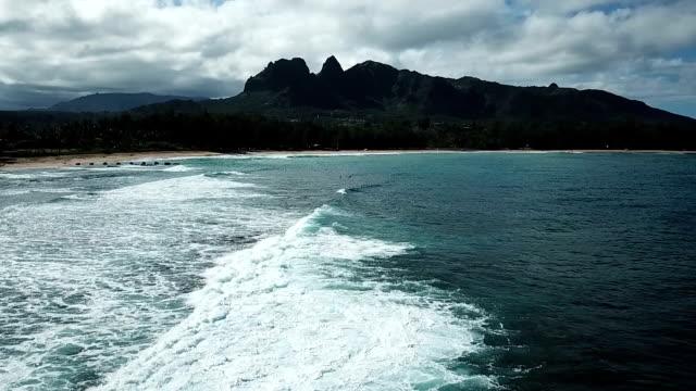 Flying Above Waves on Coast of Hawaiian Island video