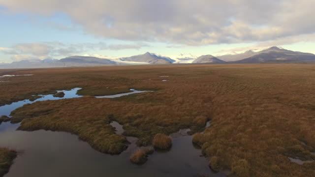 AERIAL Flying above wetlands in Iceland video