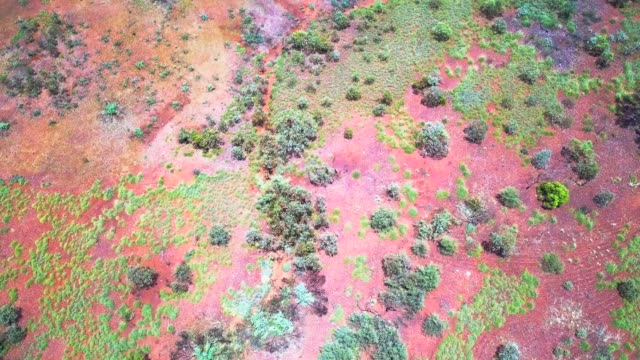 flying across the australian outback - western australia stock videos & royalty-free footage