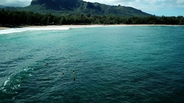 Flying Alongside Gorgeous Beach on Maui Coastline video