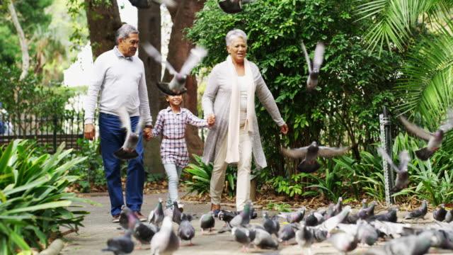flying away with the birdies! - nonna e nipote camminare video stock e b–roll