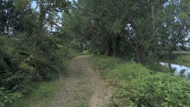 flying backwards in a dirt road of a riverbank  -  aerial footage video