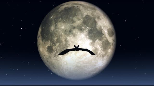 flying bat video