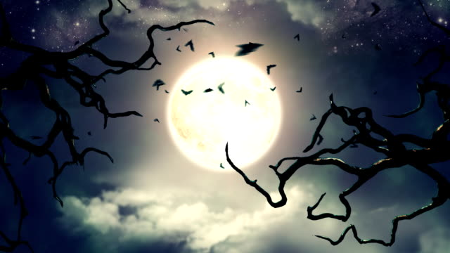 Flying bats in the light of spooky Moon HD