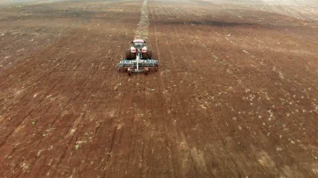 Flying behind a tractor with a harrow cultivating farmland surrounded by hungry birds in the spring Aerial: flying behind a tractor with a paired wheel system and a disc harrow. A farmer in an agricultural machine cultivates farmland surrounded by hungry birds in the spring harrow agricultural equipment stock videos & royalty-free footage
