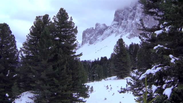 aerial: flying between treetops towards the mountains - delstaten tyrolen bildbanksvideor och videomaterial från bakom kulisserna