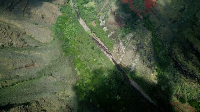 Flying Directly Above Green Valley Floor on Waimea Island video