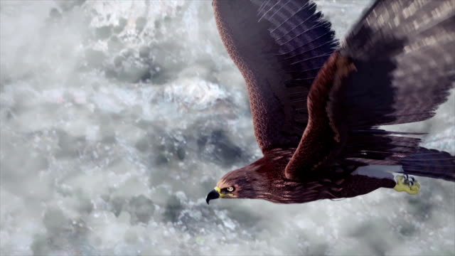 Flying eagle with Mountains and sky Flying eagle with Mountains and sky eagle bird stock videos & royalty-free footage