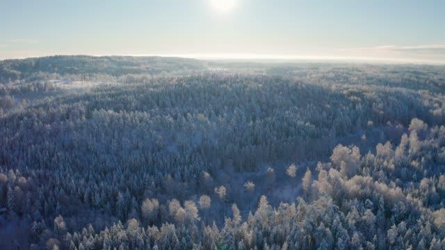 vídeos de stock e filmes b-roll de flying high above epic snow covered forest in cold winter landscape - países nórdicos