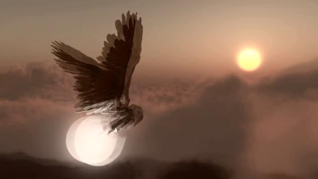flying idea - крыло животного стоковые видео и кадры b-roll