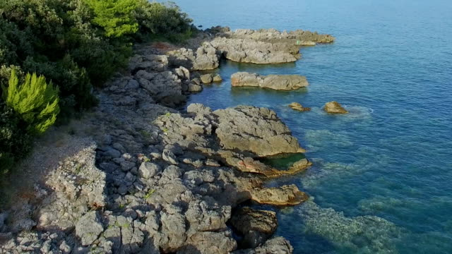 Flying Low Over Adriatic Coast Line With Stones Green Bushes And Clear Sea Water video