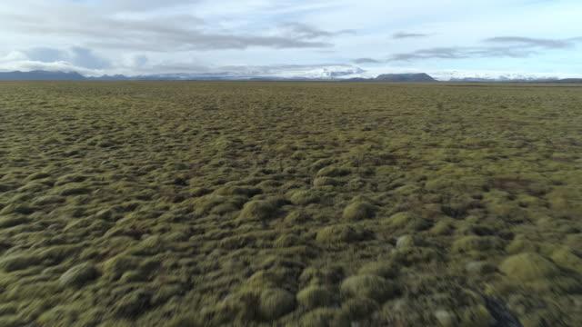 tiefflug über endlose felder des mooses, isländischen tundra unter gletscher vatnajökull - niedrig stock-videos und b-roll-filmmaterial