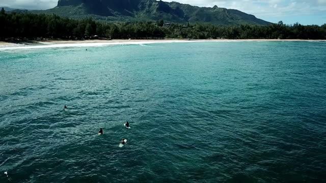 Flying Low Over Water in Hawaiian Island Cove video