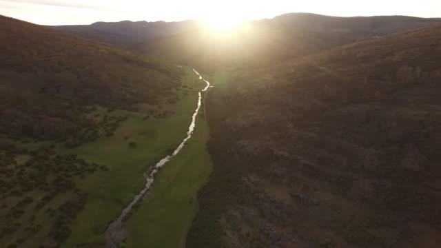 Flying on Tejera Negra Beech Forest 4 – film