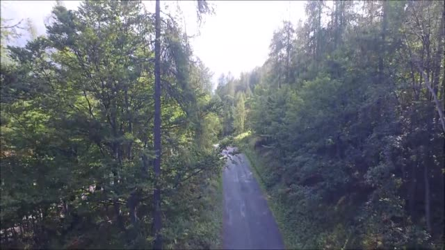 Flying out of an alpine forest video