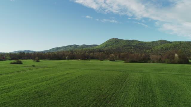 flying over a meadow towards the hills - równina filmów i materiałów b-roll
