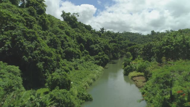 AERIAL: Flying over calm river flowing through endless jungle covering Vanuatu.