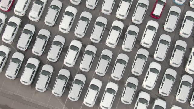 vidéos et rushes de top down: voler au-dessus des voitures enveloppées dans le blanc garé dans le stationnement de concessionnaire de voiture - voiture blanche