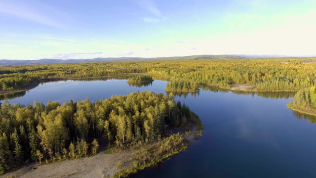Flying over Chena Lake, Alaska video