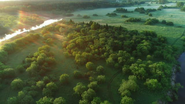 Flying over circular bend of river and forest on island inside it scenery place. video