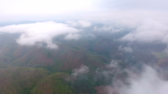 Flying Over Clouds and Tropical Forest, Aerial View video