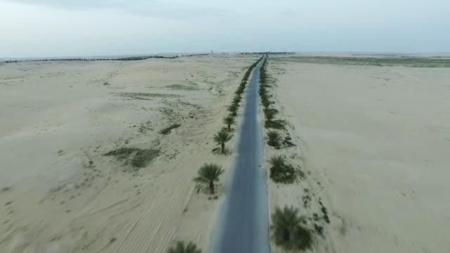 flying over dunes over road and desert - arabia saudita video stock e b–roll
