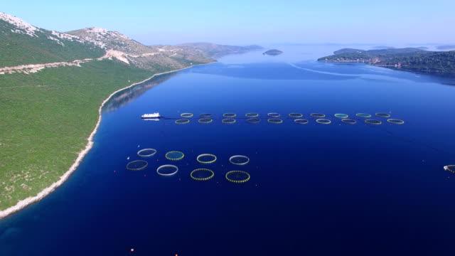 Flying over fish farm in Dalmatian sea video