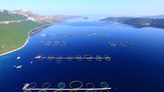 Flying over fish farm in deep blue Dalmatian sea video