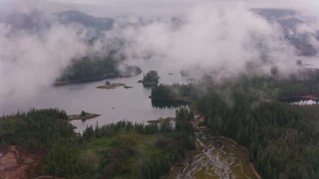 flying over forested land along alaska's coast. - fiordo video stock e b–roll