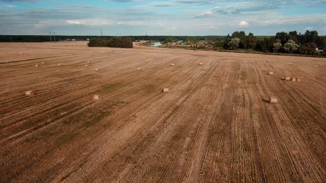 Flying over Haystacks in agricultural field. Harvesting season