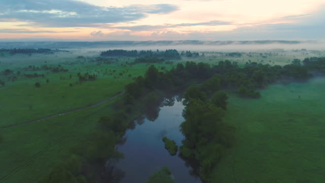 Flying over river, green field and trees in morning haze. Aerial view. Warm tint. video