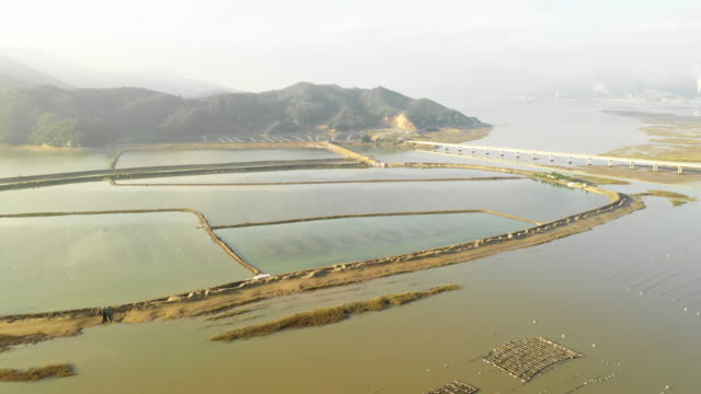 vídeos de stock e filmes b-roll de flying over seaweed and fish farms in china. - aquacultura