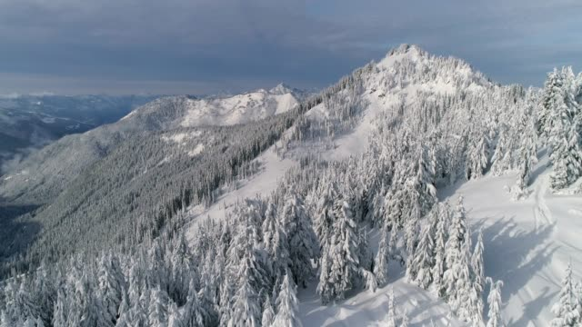 Flying Over Snowy Mountain Forest Ridge in Epic Winter Drone Shot video