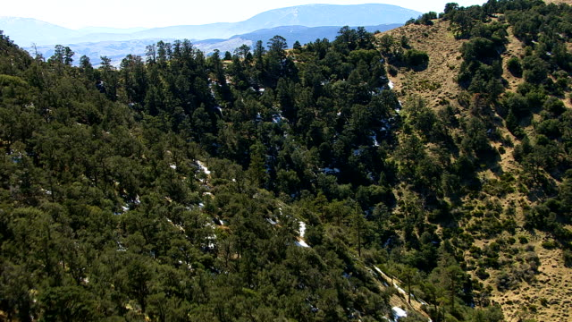vidéos et rushes de voler au-dessus des collines et la forêt du sud de la californie - californie du sud