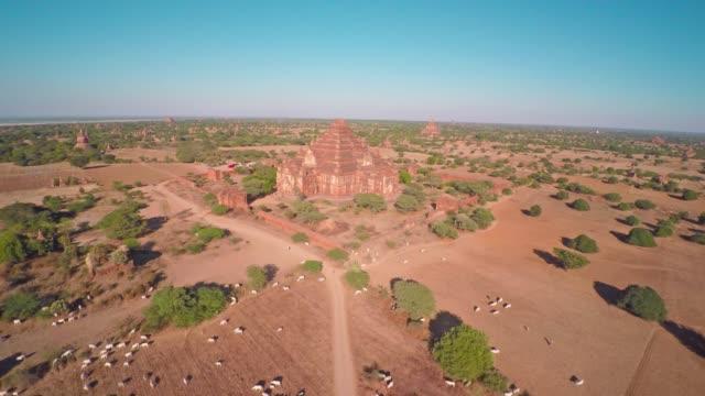 Flying over  Temples in Bagan, Myanmar (Burma) Flying over  Temples in Bagan, Myanmar (Burma), 4k bagan stock videos & royalty-free footage