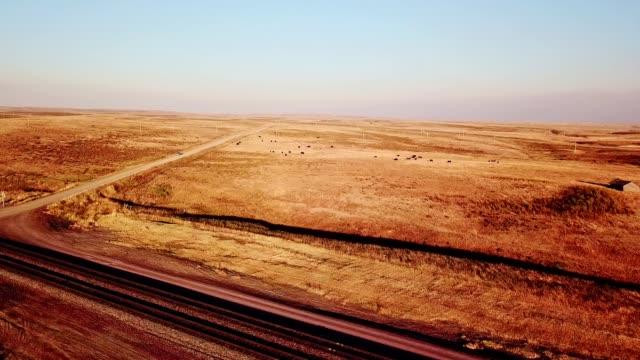 flug über die kuh in den usa - ranch stock-videos und b-roll-filmmaterial