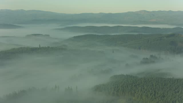Flying through mist clouds over morning haze video