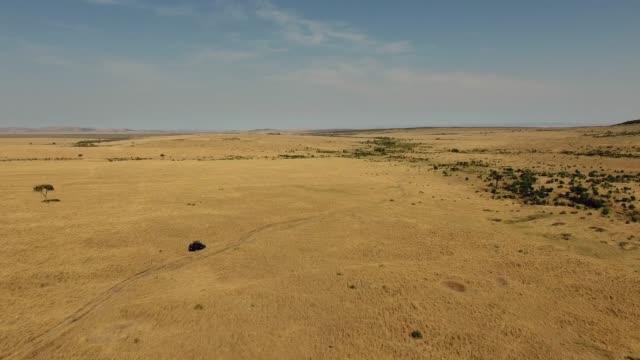 Flying towards safari Jeep in Masai Mara National Reserve