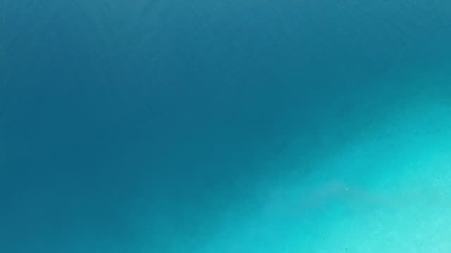 flying upwards on the sea, episode 2 of 5, from light blue to the beach video