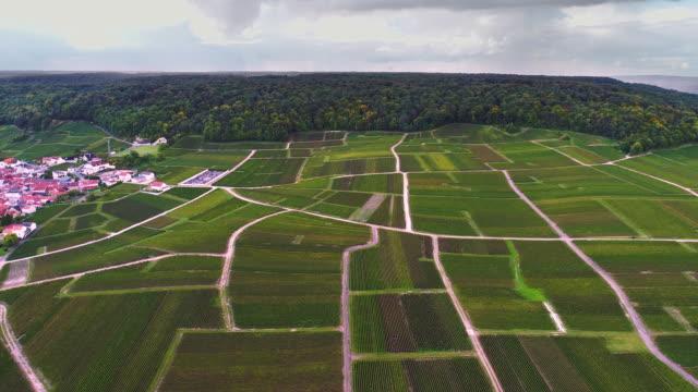 Flying upwards over vineyards of France video