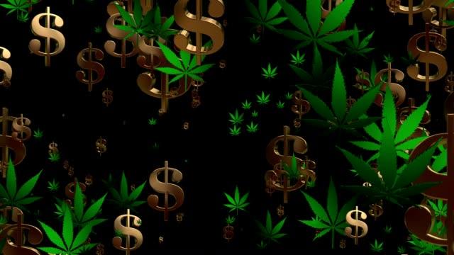 A voar EUA cifrões e cannabis leafs em Verde em Preto - vídeo
