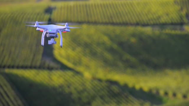 Flying utility drone over wineyard video